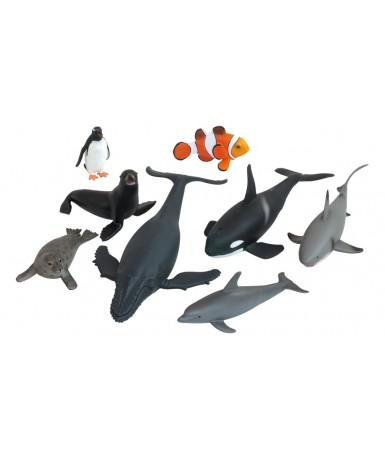 Animales oceano - 8 animales