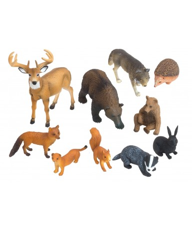 Animales bosque- 10 animales